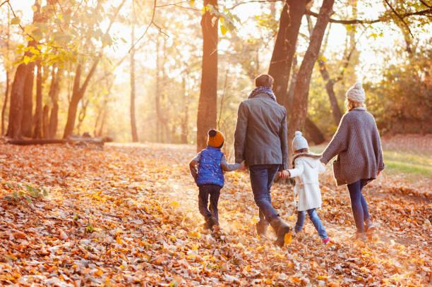 güzel sonbahar günü parkta zevk aile - fall stok fotoğraflar ve resimler