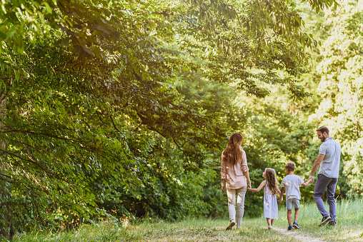 658444674 istock photo Family enjoying beutiful summer day in nature 811963816