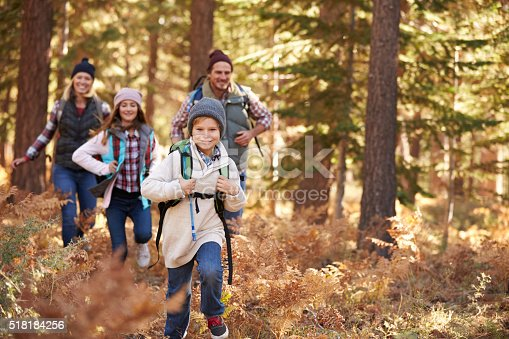 istock Family enjoying hike in a forest, California, USA 518184256