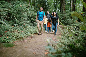 istock Family Enjoying Hike On Forest Trail in Pacific Northwest 1270104153