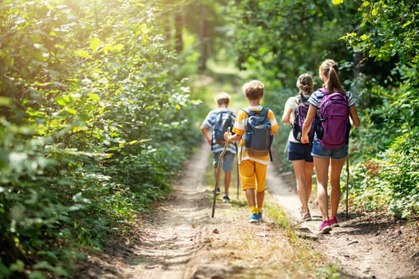 familie genieten van wandelen samen - wandelen stockfoto's en -beelden
