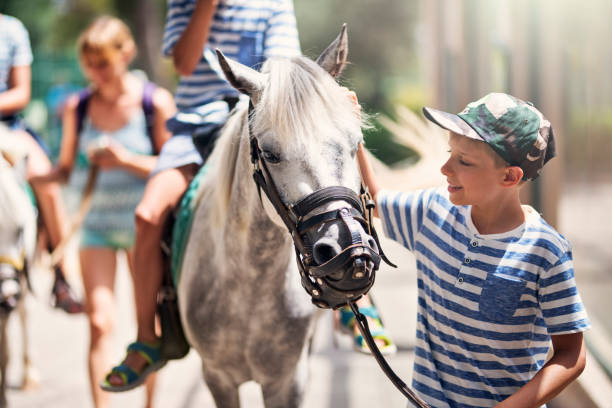 Family enjoying horse ride Mother and kids enjoying horse ride. Little boy is smiling at the horse. Sunny summer day. Nikon D850 pony stock pictures, royalty-free photos & images