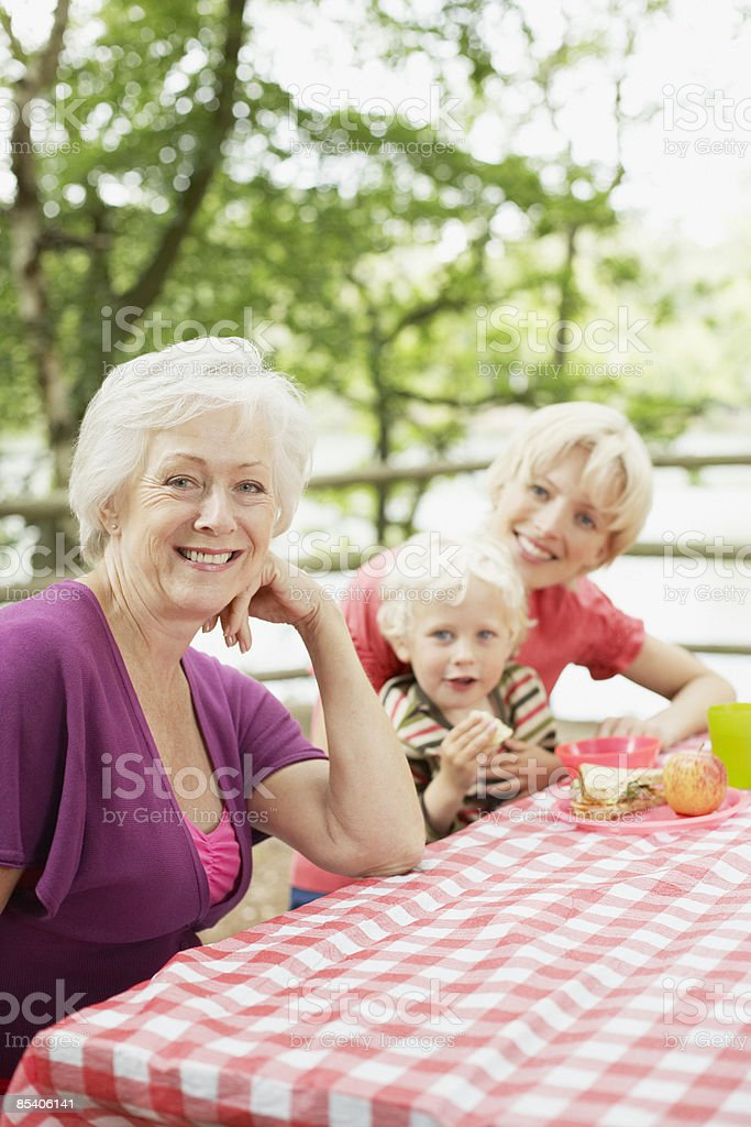 Family enjoying picnic in park 免版稅 stock photo