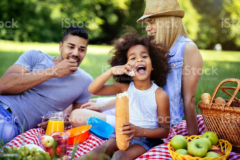 Family enjoying picnic outing stock photo