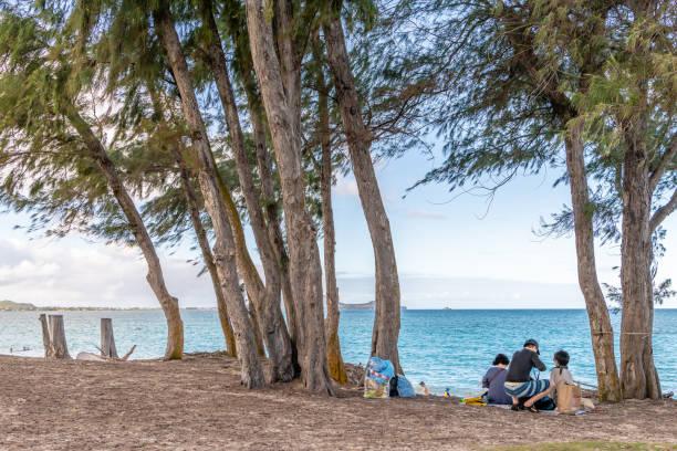 A family enjoys a picnic at the beach at Kailua Beach Park stock photo