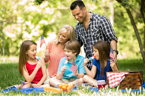 Family Enjoys July 4th Picnic In Summer Season American Flags Stock Photo - Download Image Now