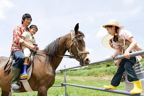 乗馬家族が発生しました。 - 乗馬 ストックフォトと画像