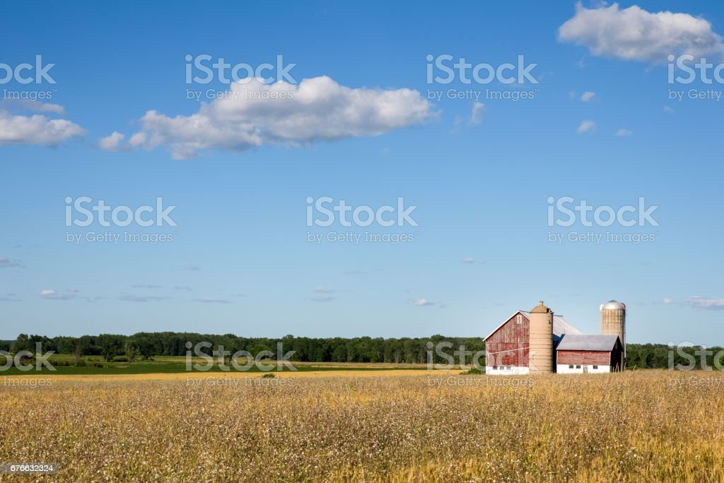 Family Farm Scene with Copy Space stock photo