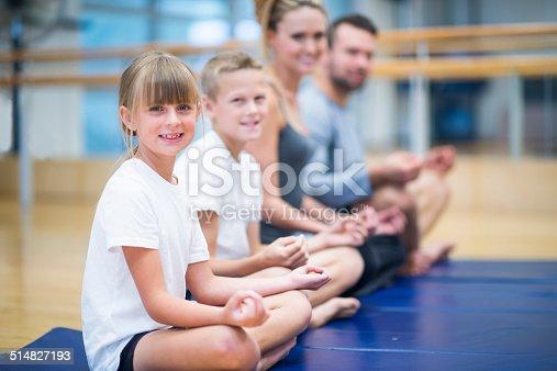 916126642 istock photo Family fitness 514827193
