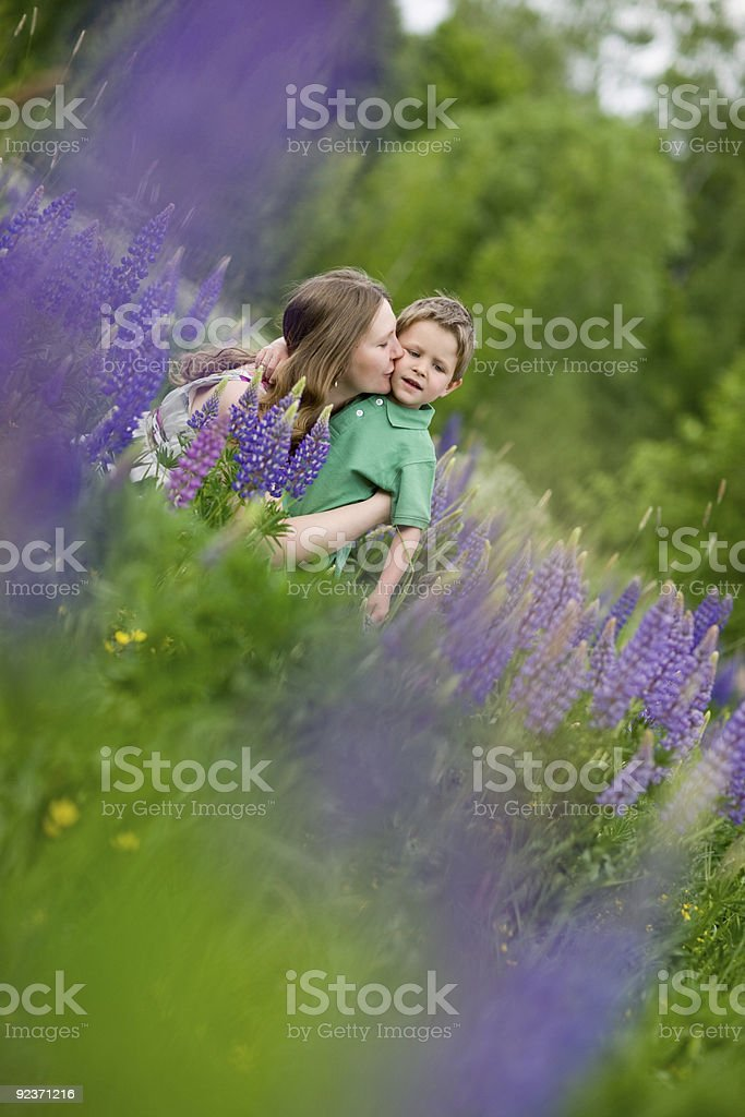Family fun at sunny day royalty-free stock photo