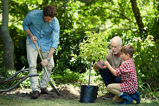 family gardening in park - diken bitki niteliği stok fotoğraflar ve resimler