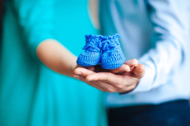 Family Hands, Mother and Father Hand Holding blue Newborn Baby Booties stock photo