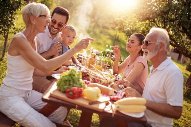 familie met een barbecue in een park - barbecue maaltijd stockfoto's en -beelden