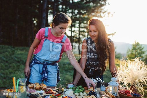Young people preparing food for picnic day in the countryside. Various foods on an old, rustic, wooden table.