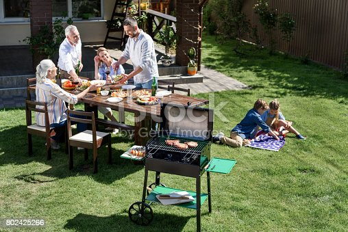 istock family having barbecue while celebrating 4th july together, Independence Day concept 802425266
