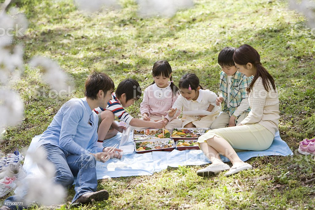 Family having flower-viewing boxed lunch stock photo