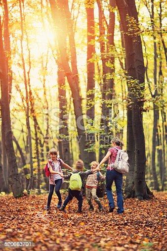 istock Family having fun in autumn beech forest 520663701