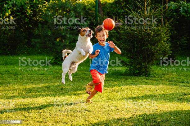 Family having fun outdoor with dog and basketball ball picture id1154596591?b=1&k=6&m=1154596591&s=612x612&h=hjvwbswvbd wbrsrvuupx7bej4efvn0vshkuc7rhv0a=