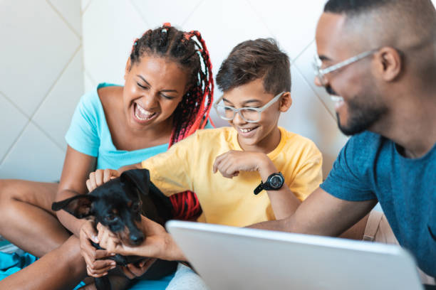 Family having fun with their pet Afro family, Child, Dog, Happy, House animal stage stock pictures, royalty-free photos & images