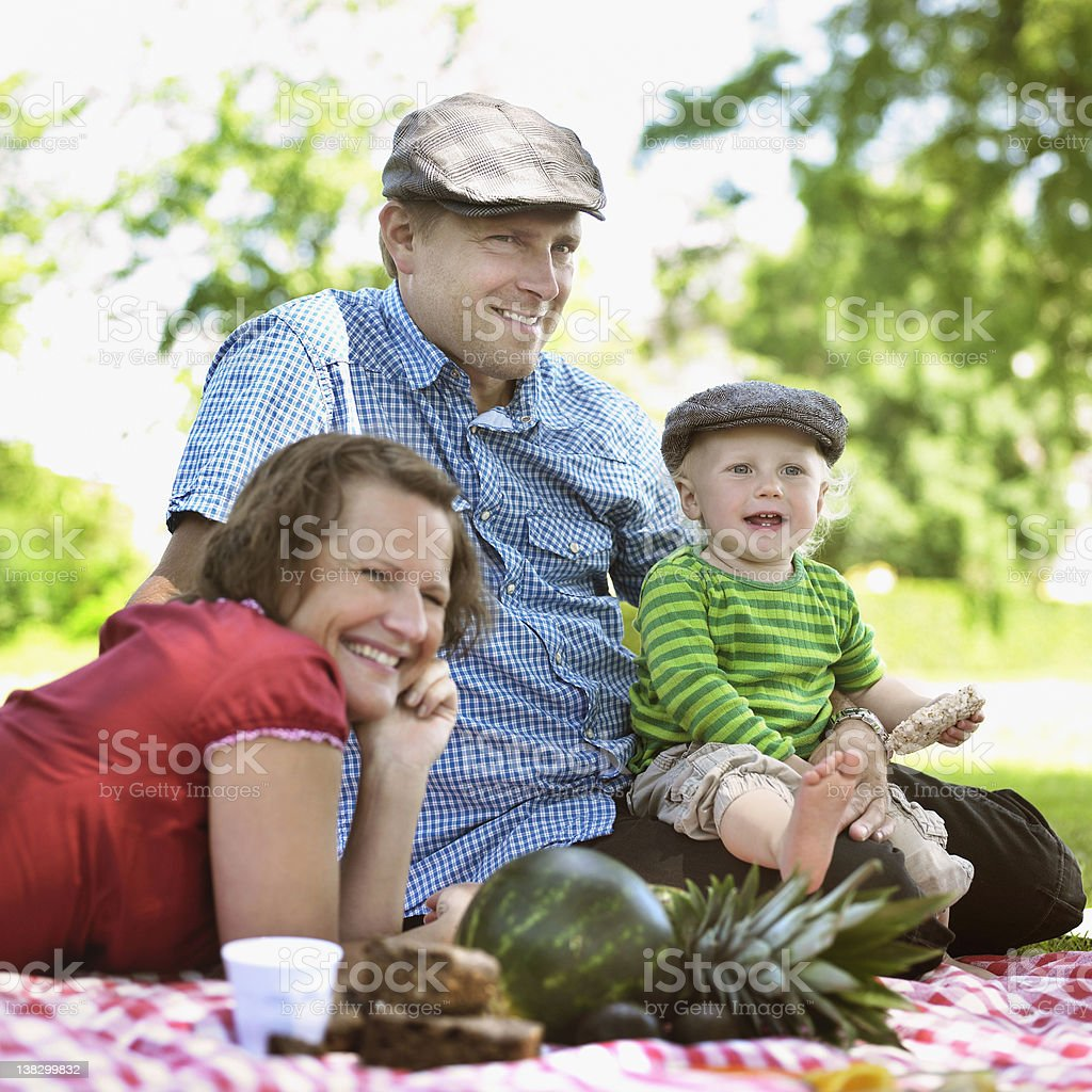 Family having picnic together stock photo