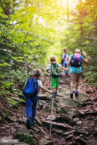 istock Family hiking in sunny forest 638770282