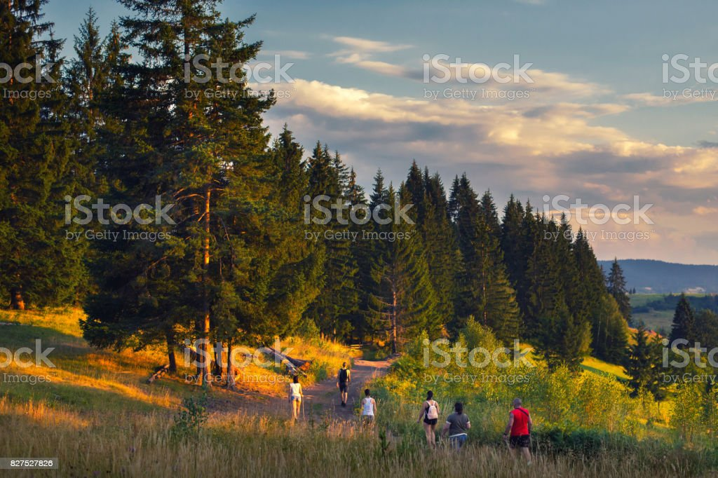 Family hiking in the mountains nature in summer stock photo