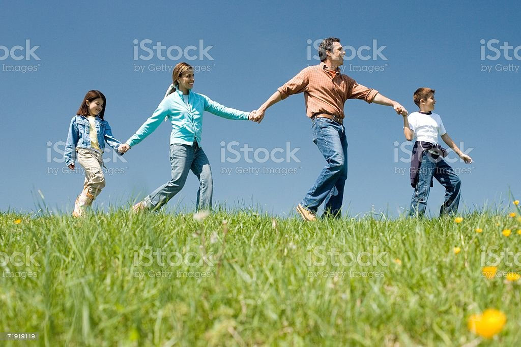Family holding hands, walking on meadow royalty-free stock photo