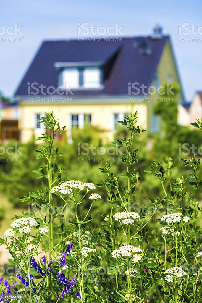 Family house with garden royalty-free stock photo
