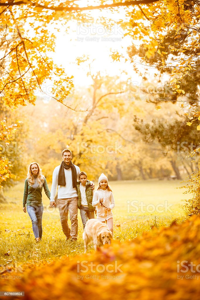 Family in autumn park with their dog stock photo