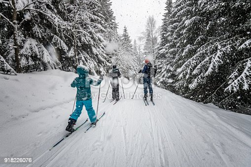 family in snowy winter landscape of giant mountains on cross-country-ski