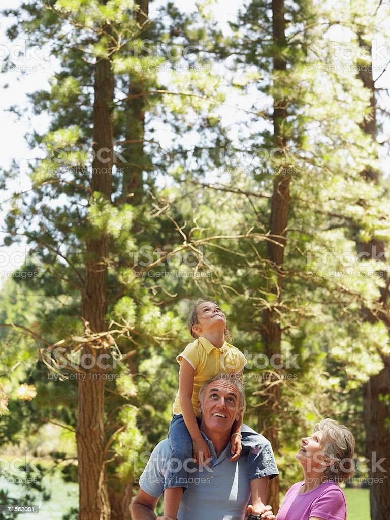 Family in the forest royalty-free stock photo