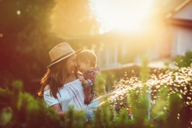 familie im garten im sonnenuntergang - gartenarbeit stock-fotos und bilder