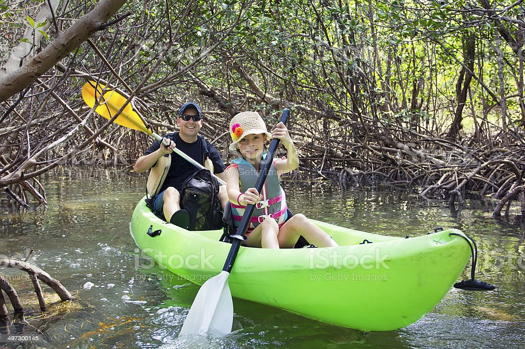 Family kayaking through tropical mangrove Forest stock photo