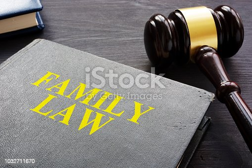 istock Family Law book and gavel on a desk. 1032711670