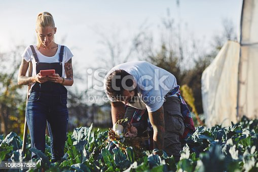 1063236916 istock photo Family Life On The Organic Farm 1066847888