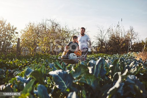 istock Family Life On The Organic Farm 1066849626