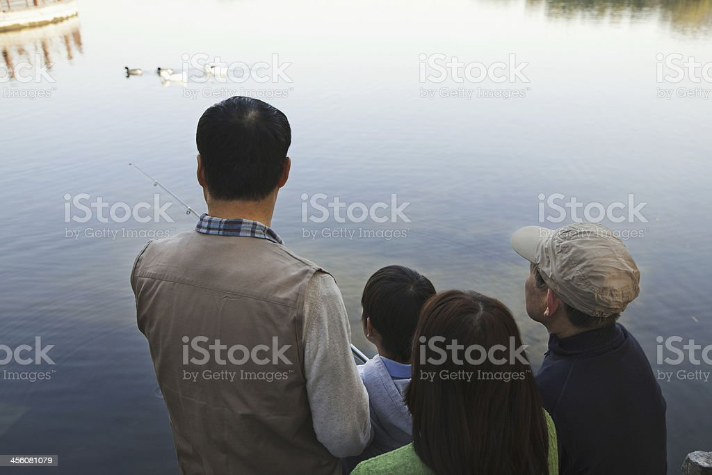 Family looking at ducks in a lake royalty-free stock photo