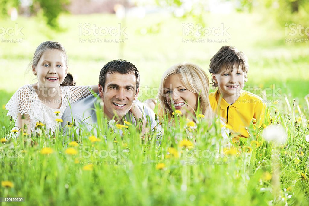 Family lying in the field of dandelions. royalty-free stock photo