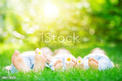 480122543 istock photo Family lying on grass 480178025