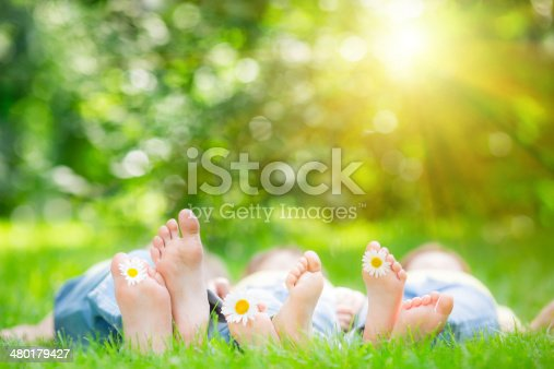 istock Family lying on grass 480179427
