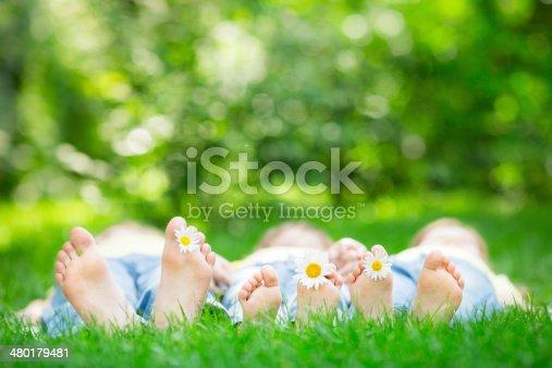 480122543 istock photo Family lying on grass 480179481