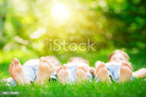 480122543 istock photo Family lying on grass 480179485
