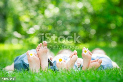 480122543 istock photo Family lying on grass 480179491