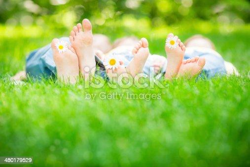 480122543 istock photo Family lying on grass 480179529