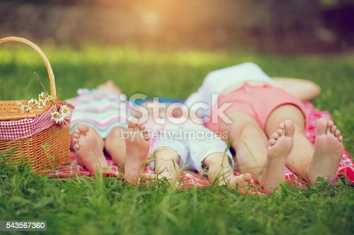 480122543 istock photo Family lying on green grass in spring park 543567360