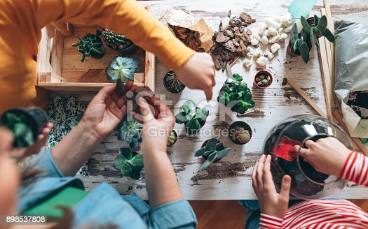 Photo of mother with children making terrarium at home