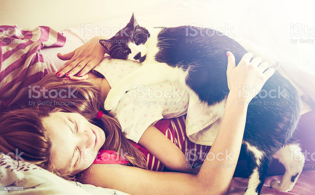 Family napping with loving cat bildbanksfoto