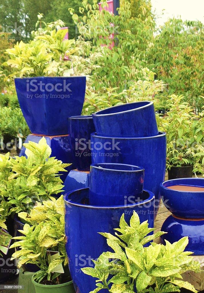 Family of blue ceramic plant pots amidst folliage stock photo