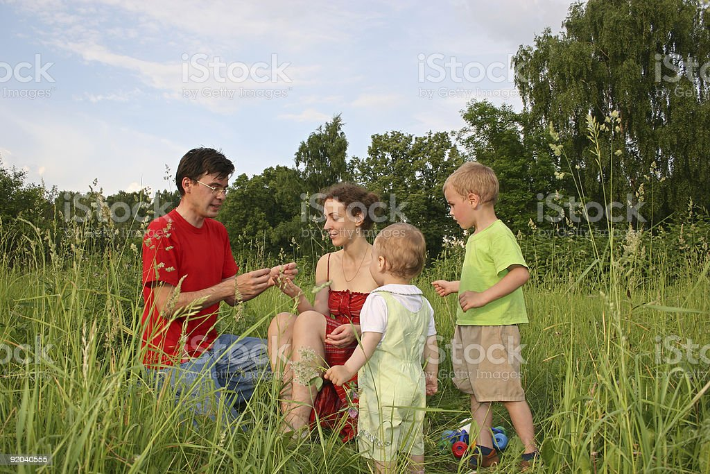 family of four on meadow 3 stock photo