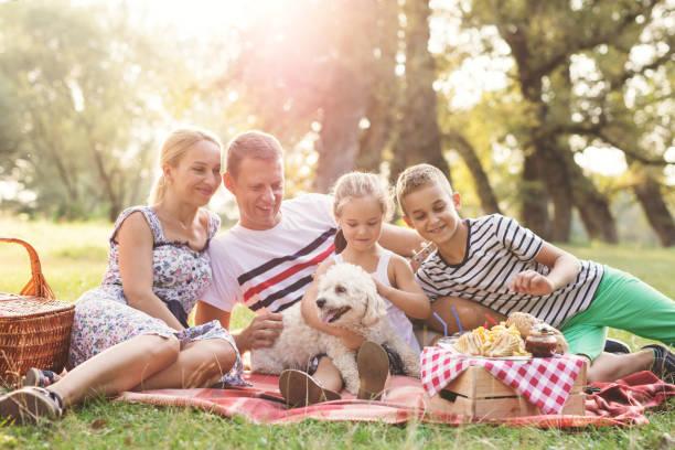 family on a picnick together - pesche bambino foto e immagini stock